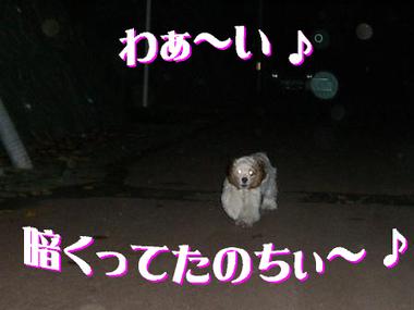121001