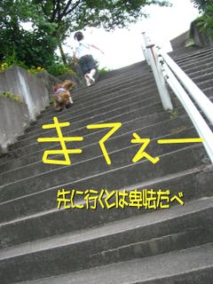 616_0031